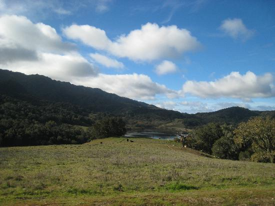Alisal Guest Ranch & Resort: Beautiful landscape