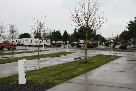 Albany, Oregón: Blue Ox RV Park - snow has melted!