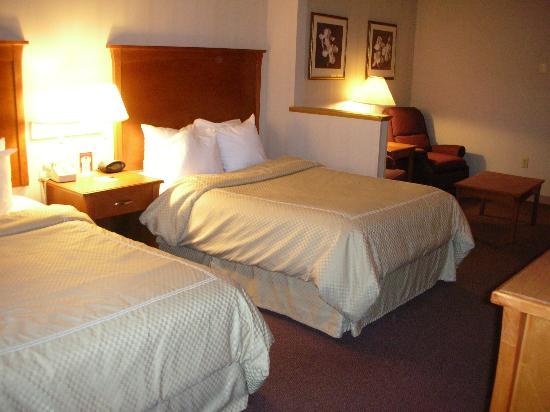 Comfort Suites: Room (135)