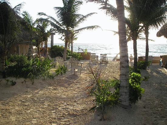 Hotel CalaLuna Tulum: Hotel Property