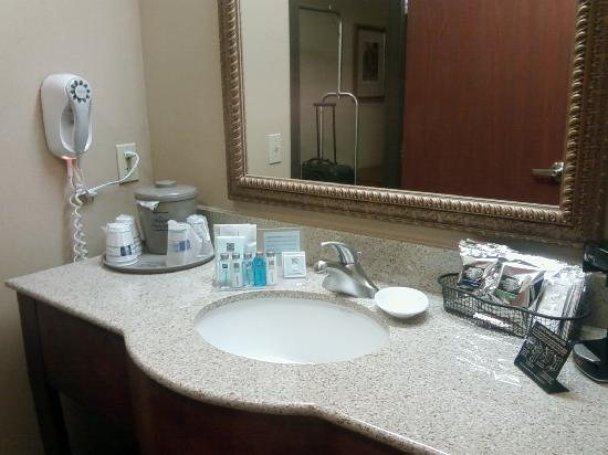 Hampton Inn Suites Phoenix Surprise: Sink area
