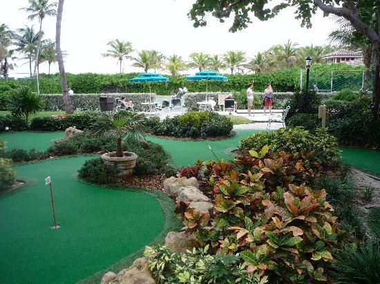 Mini Golf With Shuffleboard And Tennis Beyond Picture