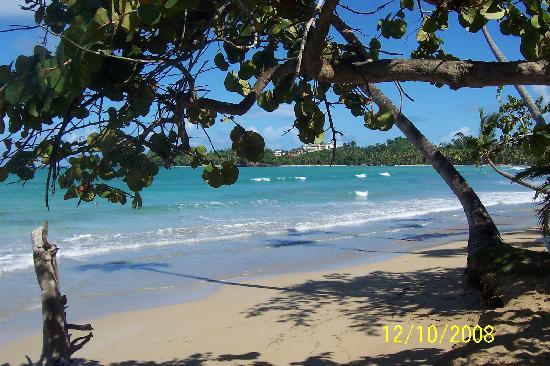 Punta Bonita Beach Resort : vom meer ist der strand ausgewaschen aber super zum baden