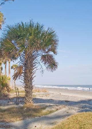 Hunting Island State Park Beach