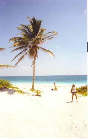 Hotel & Cabanas Zazil Kin Tulum: la spiaggia dove c'è la capanna