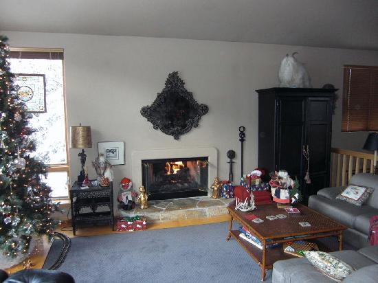 Alpine Creek Bed and Breakfast: Such a cozy fireplace