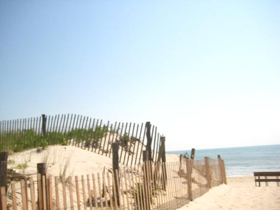 Victoria House Bed And Breakfast Beach Haven Nj : Good afternoon lbi foto beach haven long island