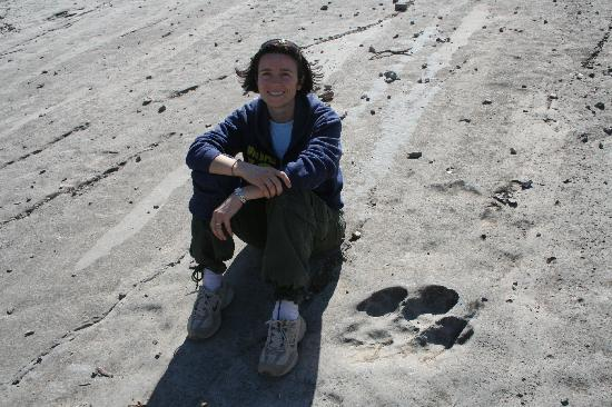 Türkmenistan: Impronte di dinosauro...Kuguitang Mountains, Lebap region