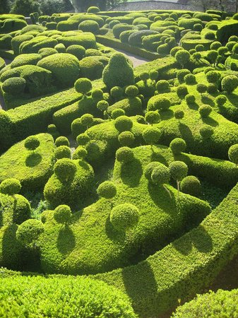Vezac, France: boxwood garden