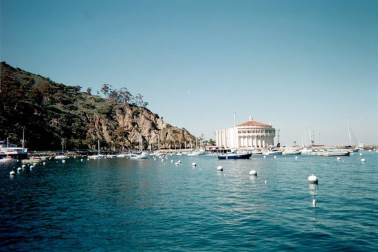 Catalina Island, CA: Picture of the