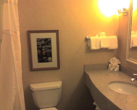 Hilton Garden Inn Albany Medical Center : bathroom