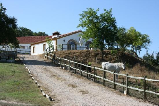Quinta Da Alcaidaria-Mor : A casinha onde ficamos alojados