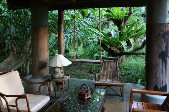Fern Paradise : Planta baja del barn