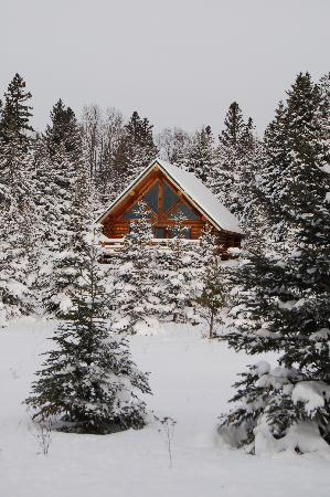 A G Thomson House Bed and Breakfast: Snow Covered Cabin