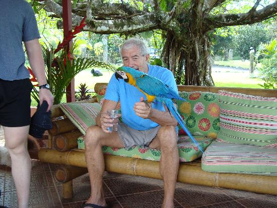 Blue Banyan Inn: Jim and Tiki