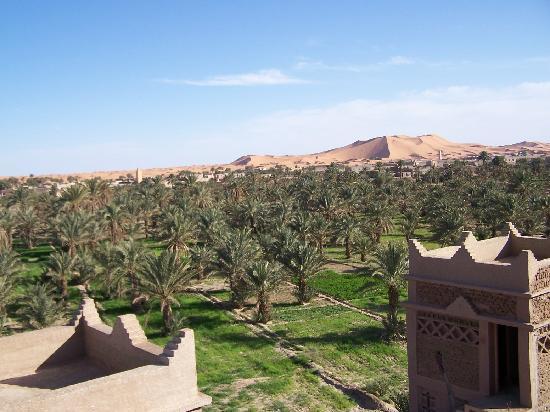 Riad Nezha: Avec vue sur la palmeraie