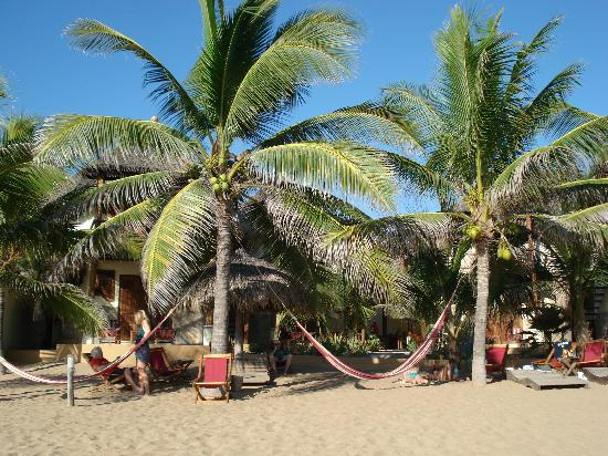 Punta Placer Bungalows : Beach view of Cabanas Punta Placer