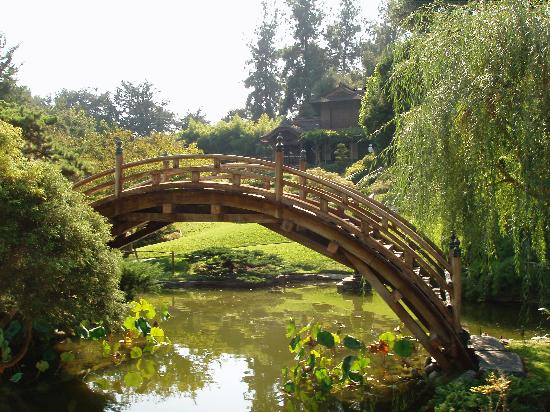 The Huntington Library, Art Collections and Botanical Gardens: Huntington grounds