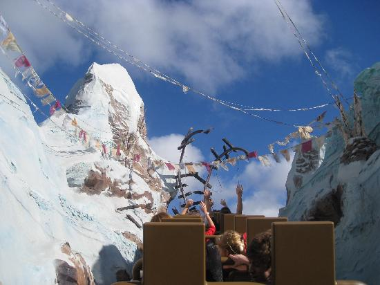 Disney's Beach Club Resort: Yeti Breaks the Track at Expedition Everest