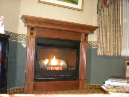 Comfort Inn & Suites: fireplace