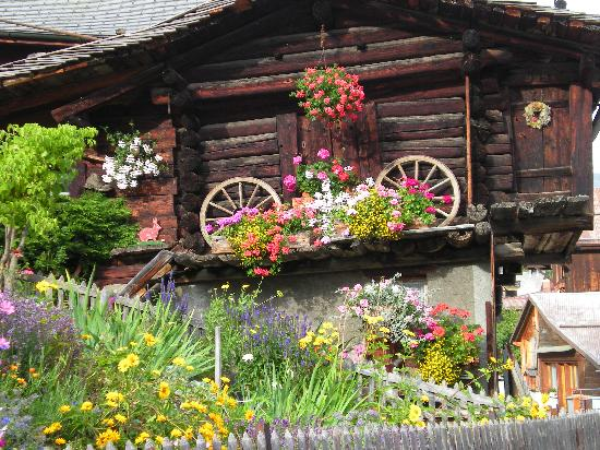 Eiger Guesthouse: a flower garden in the Alps