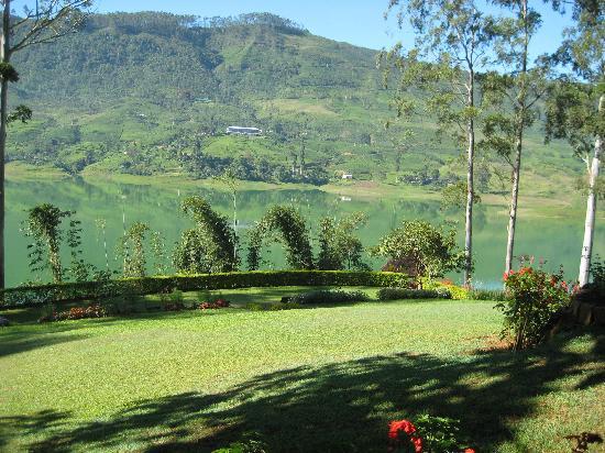 Ceylon Tea Trails: View