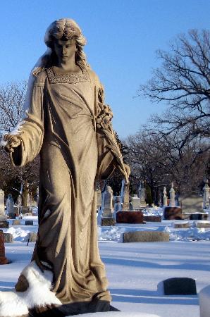 Bohemian National Cemetery: Angel