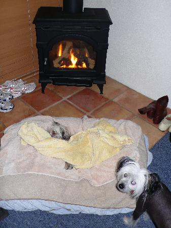 Cottages at Point Reyes Seashore: fireplacepups