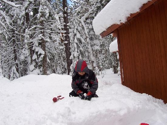 Donner Lake Inn Bed and Breakfast: Save place to play