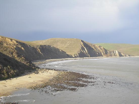 Cottages at Point Reyes Seashore: elephant seal beach