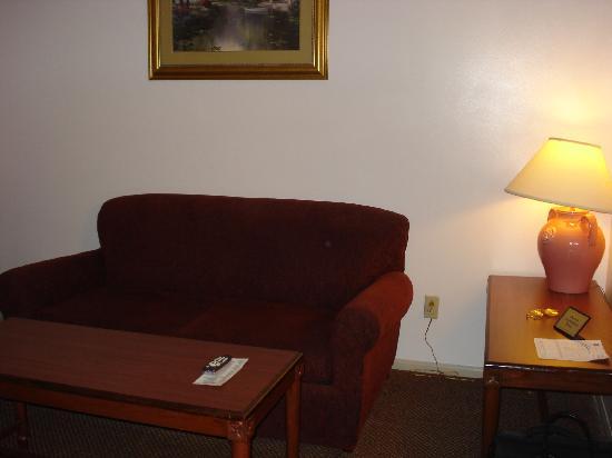 Comfort Suites San Clemente: Living room 2