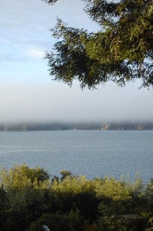 Marshall, Califórnia: View from the deck -- the morning fog