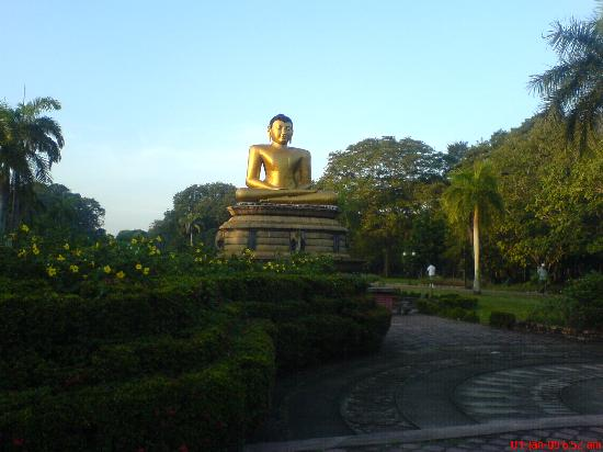 Green Path: The Buddha Statue at the entrance