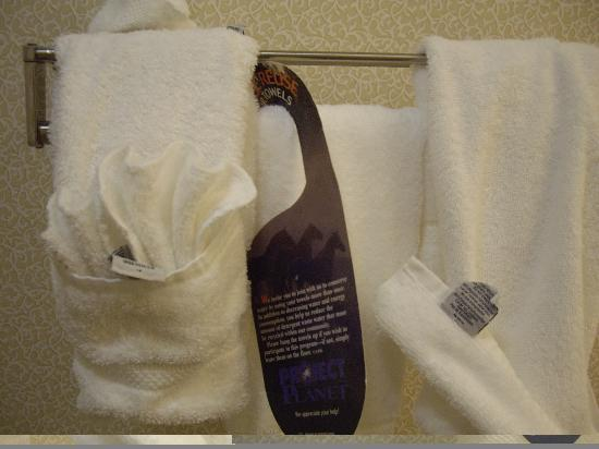 Comfort Suites Regency Park: Towels in Bathroom
