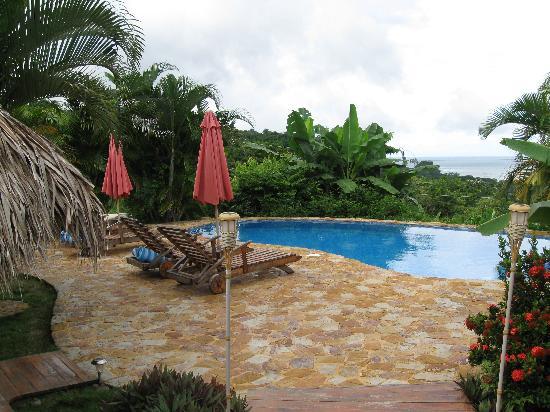 Casa Chameleon Hotel: pool