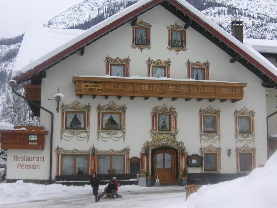 Holzgau, Austria: Bären von vorne