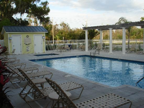 Hilton Garden Inn Lakeland: pool