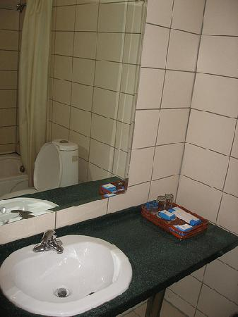 Zaluuchuud Hotel: bathroom sink