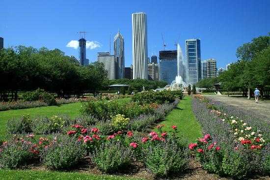 Grant Park: Rose Garden Vista