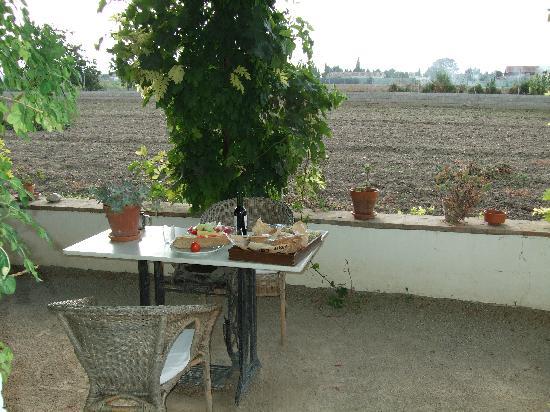 Cortijo del Pino: the terrace