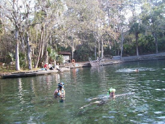 Wekiwa Springs State Park: The spring