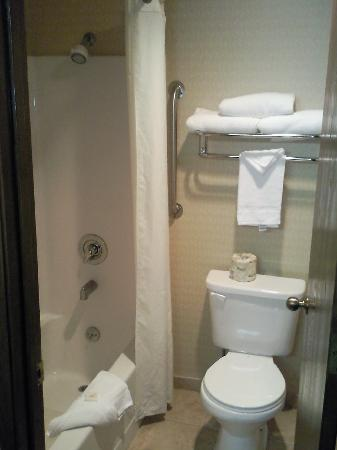Comfort Inn Newport: Tiny bathroom