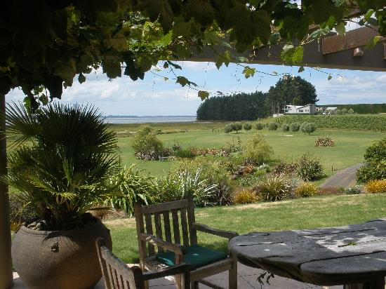 Matahui Lodge : Looking out to the vineyard