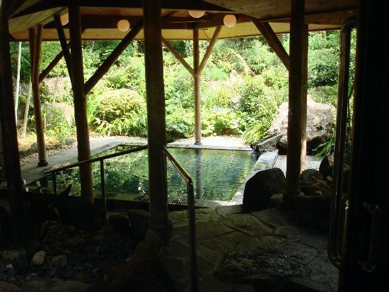 Inn Seiryuso: onsen