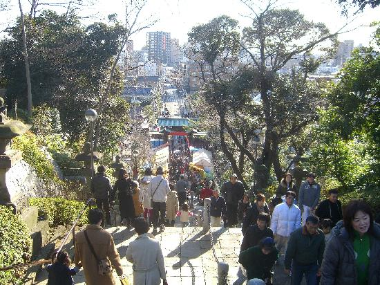 Ikegami Hommon-ji Temple: 本門頂上から呑川方面を見下ろします。