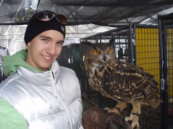 The Arboretum at Flagstaff: Alex & Malichi, the owl