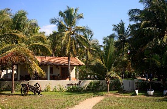 Barra de Potosi, เม็กซิโก: Bungalow #5