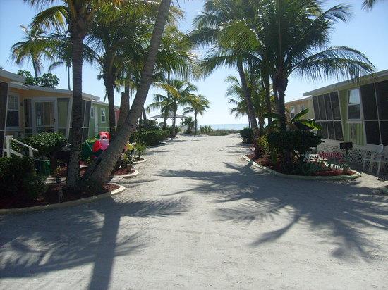 Beachview Cottages: Beachview Grounds
