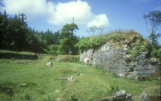 Castletownbere, Ireland: Dunboy Castle Grundmauern