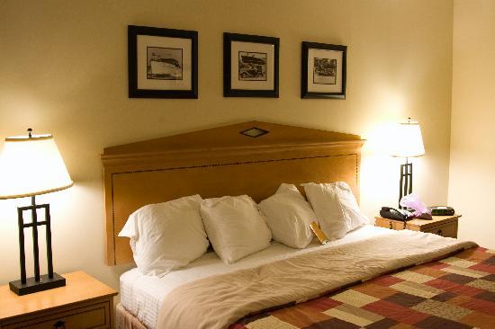 Holiday Inn Santee : Standard Room